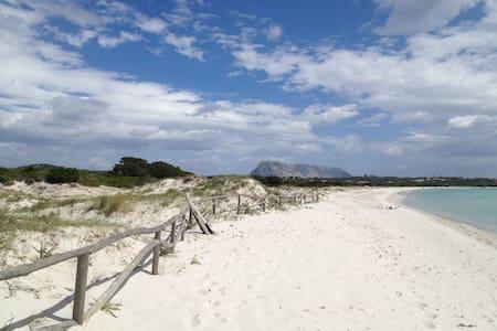 CasaMare   La Cinta beach / San Teodoro town