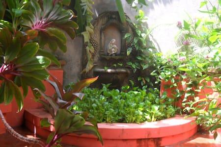 Guesthouse/ Garden Hotel El Nancite - Bed & Breakfast