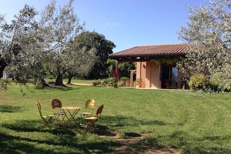 Studio surrounded by olivetrees! - Casa