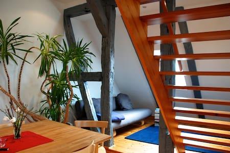 Ferienwohnung mit Seeblick - Apartment