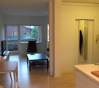Fully equipped lakeside flat in CPH - Apartment
