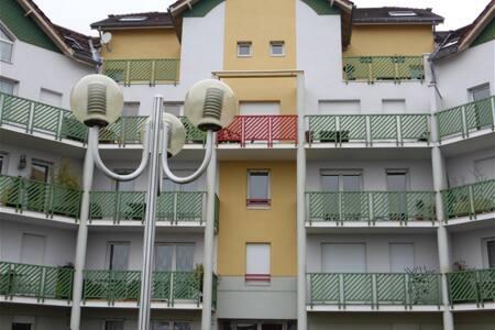 Grand meublé à 15min de Geneve RDC - Appartement