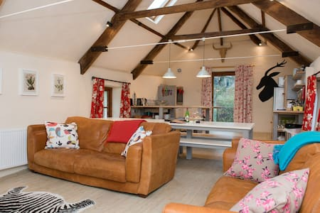 Beautiful Dartmoor Barn Conversion - Hus