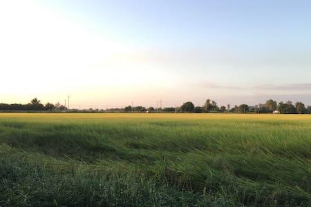 Baansuan Pechnamkang - Amphoe Si Prachan