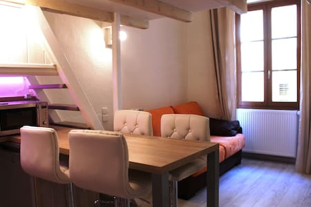 Newly renovated studio in the heart of Annecy - Appartement
