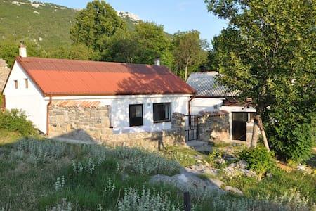 Mountain cottage near the sea - Dům