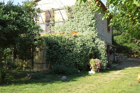 Querce, Olive e Vigna - Monte Antico - Apartemen