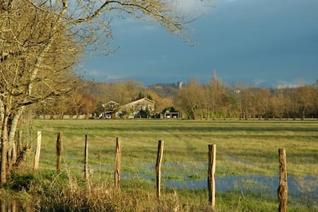 Maison en pierre,  bord de Garonne  - Cadaujac - Talo