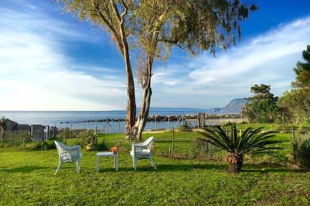 Scilla&Cariddi mini-resort sulla spiaggia - Bed & Breakfast