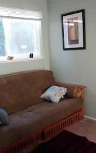 Cozy library futon - House