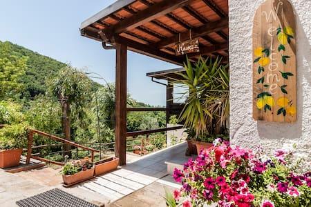 Rural Guesthouse Monte Ofelio (camera romantica) - Sessa Aurunca - Bed & Breakfast