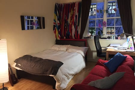 Large room opposite King's Cross