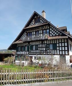 schöners grosses helles Zimmer - Uerzlikon - Dom