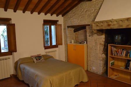 DOWNTOWN NEST - Arezzo - Loteng