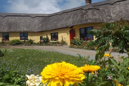 Seaview Room in Thatched Cottage - Wikt i opierunek