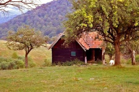 Shepherds hut • COZO FANTU •  - Fântânele - Xalet