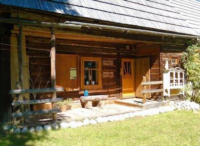 Dziupla ein Holzhaus in der Hohen Tatra - Skur