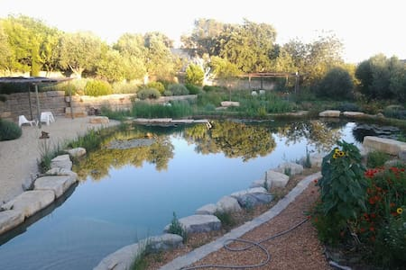 The place to regenerate in the Algarve for 2-(3) - House