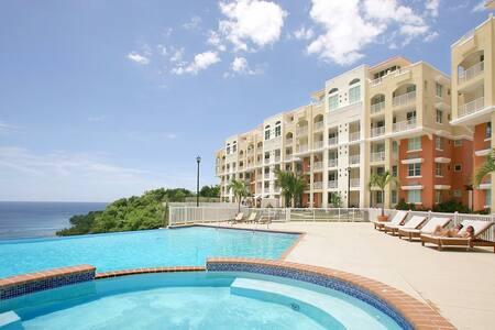 Modern Luxury Penthouse Condominium - Kondominium