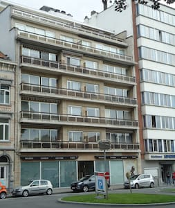 Spacious appartment in front of the parc - Koekelberg - Condominium