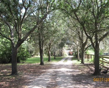 Seven Oaks Sanctuary - Other
