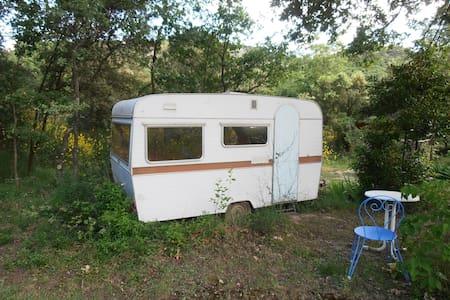 Caravane chambre pleine nature - Camper/RV