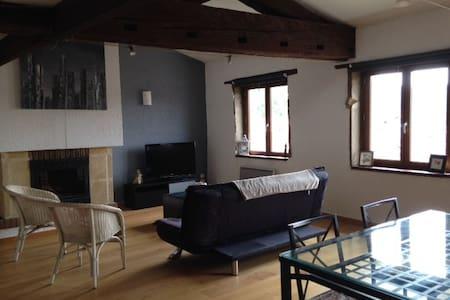 Bel appartement Vienne à 2 pas du Théatre Antique - Huoneisto