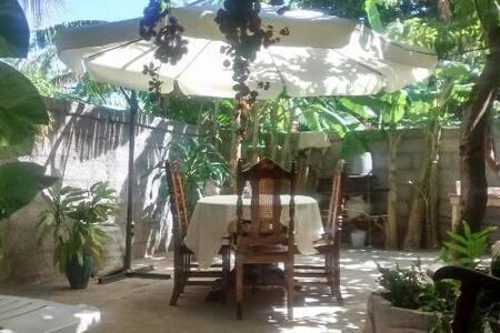 Casa la palma - Egyéb