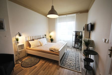 Cosy appartment close to amazing Vysehrad Castle - 布拉格