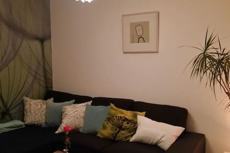 2 bedrooms in cozy apartment near city center - Utrecht