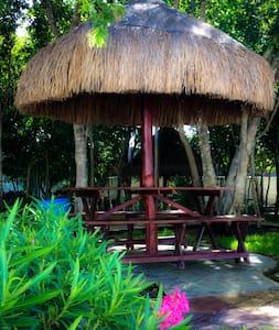Habitación con AC y Ventilador - Playa del Carmen - House