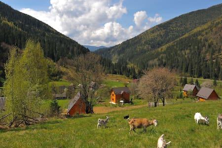 Kozichky Guest House (Приватна садиба Козички) - Szoba reggelivel