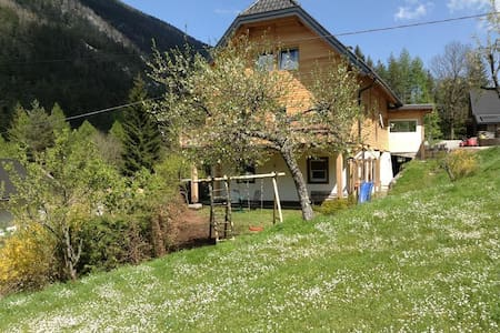 al vecchio fienile - Bleiberg-Kreuth - Lakás