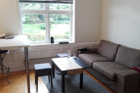 Room in lovely apartment close to city and nature - Bergen - Huoneisto