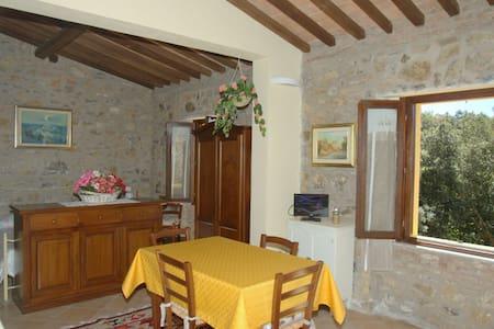 Appartamento sulle colline toscane - Pastina - Apartmen