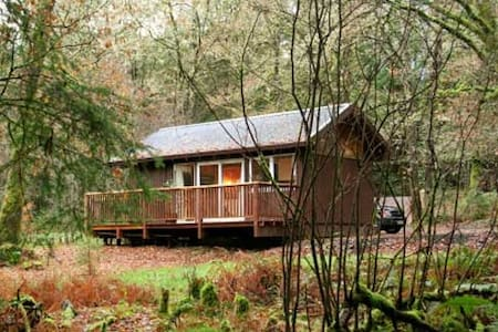 Cosy log cabin in the woods. - Dalavich - Cottage