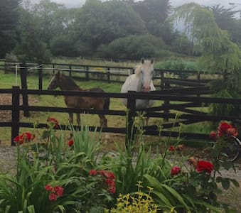 Double & Single rm in Country Cottage near Mallow - Mallow - House