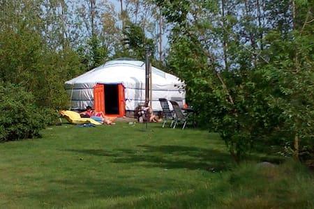 Luxe kamperen in een geweldige yurt - Jurta