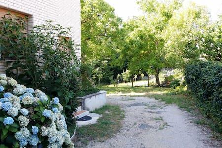 Bilocale tra i castagni - Fiuggi - Apartment