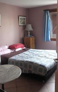 chambre dans villa au calme avec sdb/wc individuel - Décines-Charpieu - Casa
