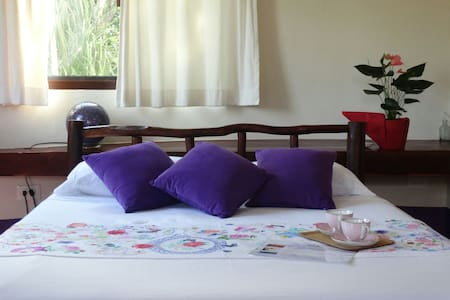Pool + Cenote: Room Violeta - Villa