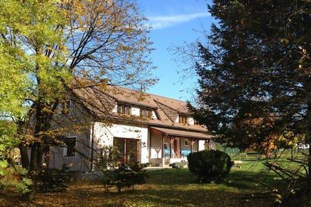 Mamut - House