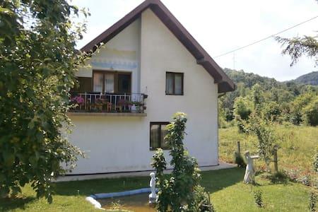 Ilya's place - Guca - Maison