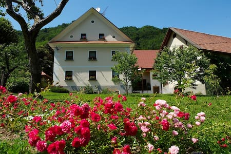 Slovenia FARM STAY Zelinc - B&B - Cerkno - Bed & Breakfast