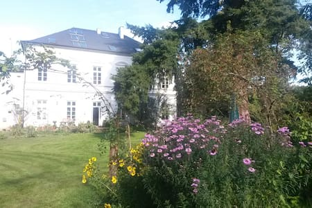 Große Ferienwohnung in alter Villa - Apartment