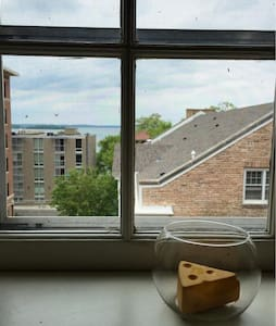 Beautiful Mendota Overlook in Central Downtown - Apartamento