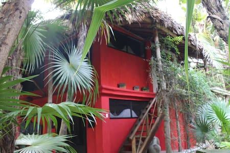 Jungle Beach House in Tulum - Tulum - House