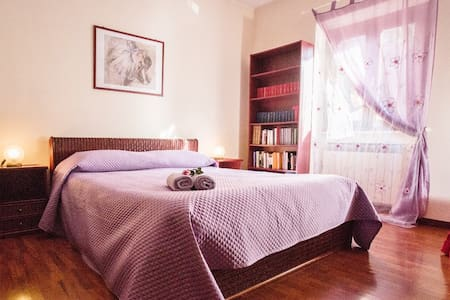 A room in a house near Rome - Bed & Breakfast