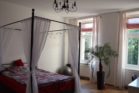 Comfy room with good public connections - Wien - Apartment