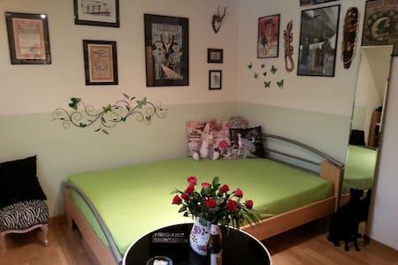 ☆Idyllische Wohnung☆ Nähe Zentrum - Appartement